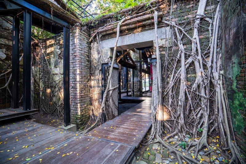 La casa en el árbol de Anping es un almacén anterior en el distrito de Anping, imágenes de archivo libres de regalías