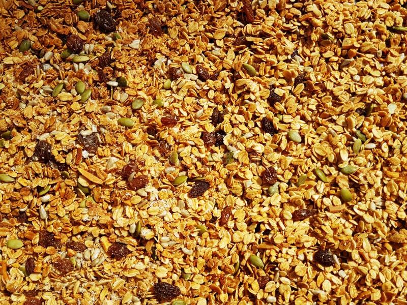 La casa ha prodotto il granola fotografia stock libera da diritti