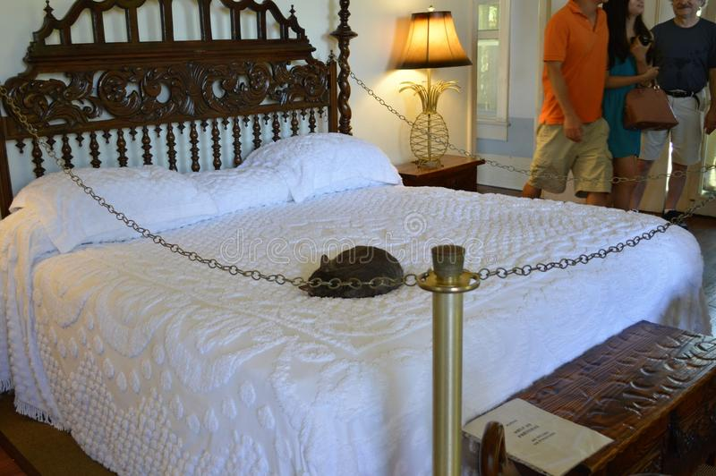 La casa Key West la Florida de Ernest Hemingway de los gatos fotografía de archivo