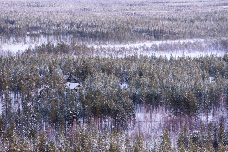 La casa nella foresta è ricoperta di neve pesante dal paesaggio di vista superiore nella stagione invernale a Lapland, Finlandia immagine stock libera da diritti