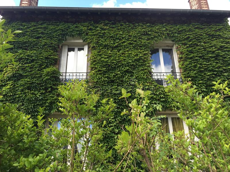 La casa verde fotos de archivo