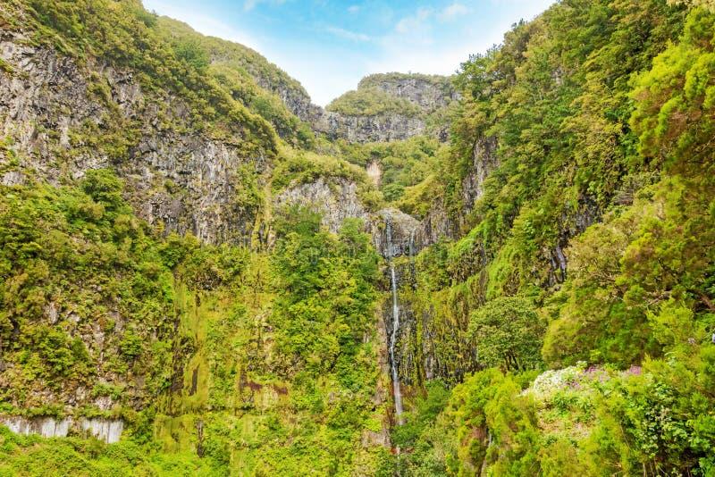 La cascada de 25 fuentes y el bosque verdoso ajardinan, Madeira fotografía de archivo