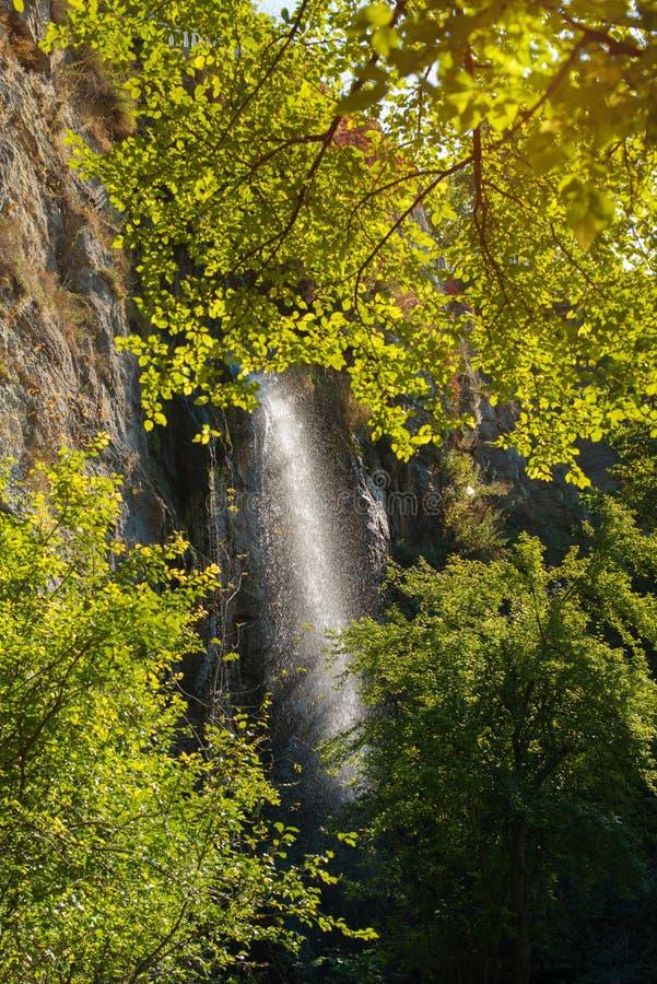 La cascada en caer del bosque del otoño salpica el agua en el backgr imagen de archivo