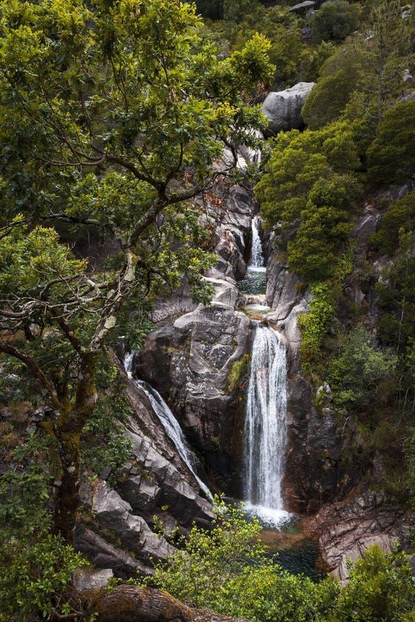 La cascada hermosa Cascata de Arado hace Arado en el parque nacional de Peneda Geres en Portuga septentrional foto de archivo libre de regalías