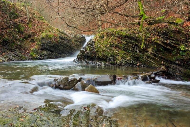 Download La Cascada Hermosa Sale De Un Río De La Bobina Foto de archivo - Imagen de árbol, caída: 42445864
