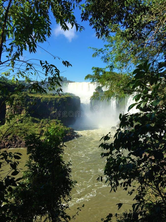 La cascada más grande del mundo - lado de las cataratas del Iguazú la Argentina foto de archivo libre de regalías