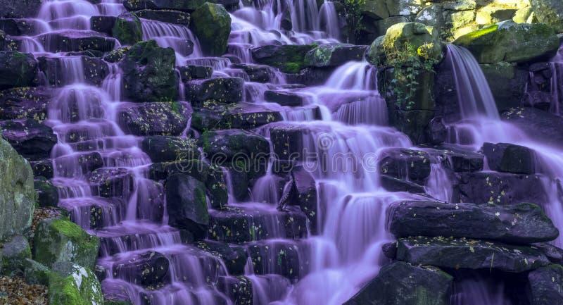 La cascada ornamental de la cascada con agua púrpura en Virginia Water, Surrey, Reino Unido fotografía de archivo libre de regalías