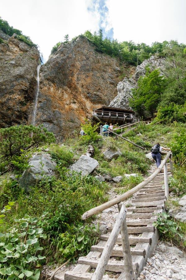 La cascade de Rinka avec des aigles nichent en vallée de Logar - de Logarska, Slovénie photographie stock libre de droits