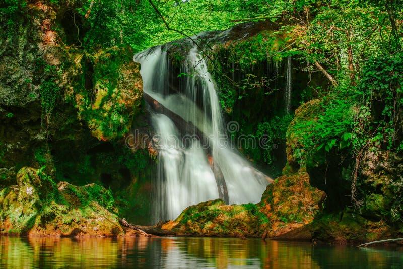 La cascade de Vaioaga de La a rencontré le trekking de moment sur des gorges de Nera pendant l'été, Roumanie images libres de droits