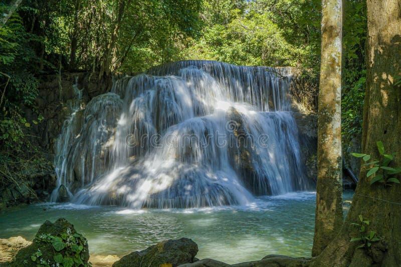 La cascade propre il y a une couleur verte verte provoquée par des réflexions des arbres et du lichen circulant par le jaune photos stock
