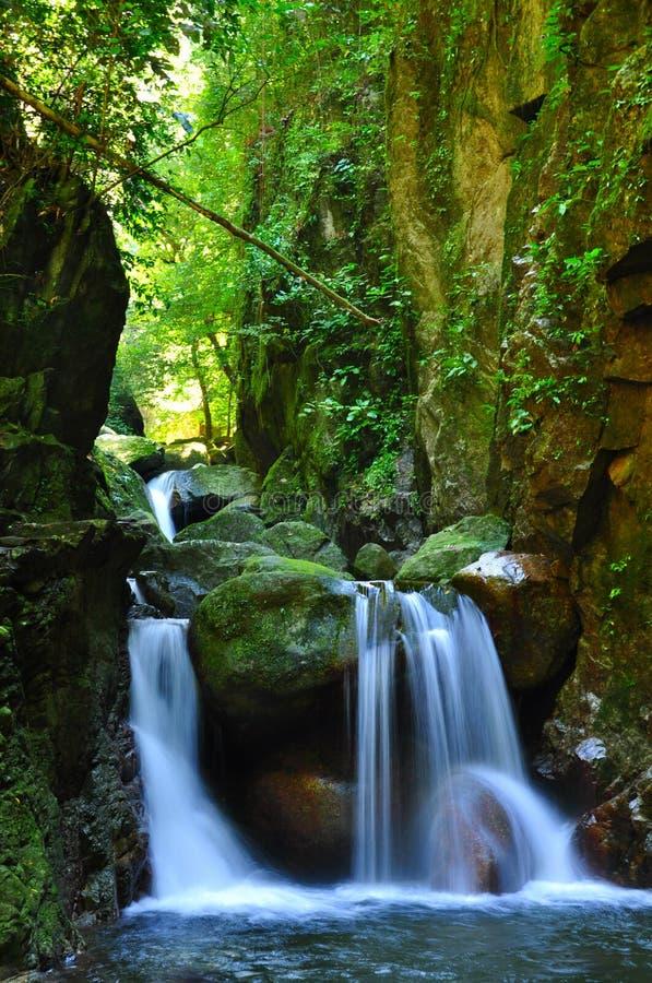 La cascata cade sopra le rocce muscose fotografie stock libere da diritti