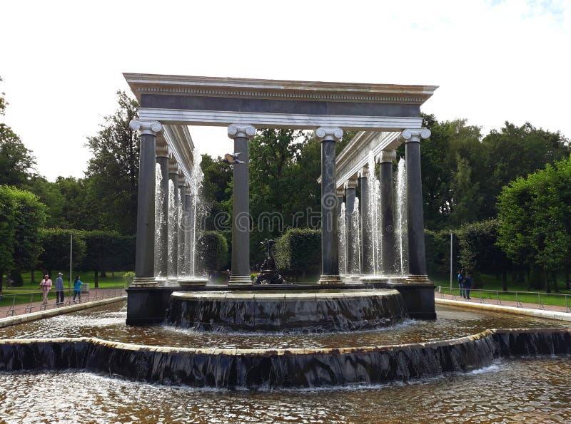 La cascata del leone, una delle cascate del palazzo di Peterhof ed insieme del parco immagini stock libere da diritti