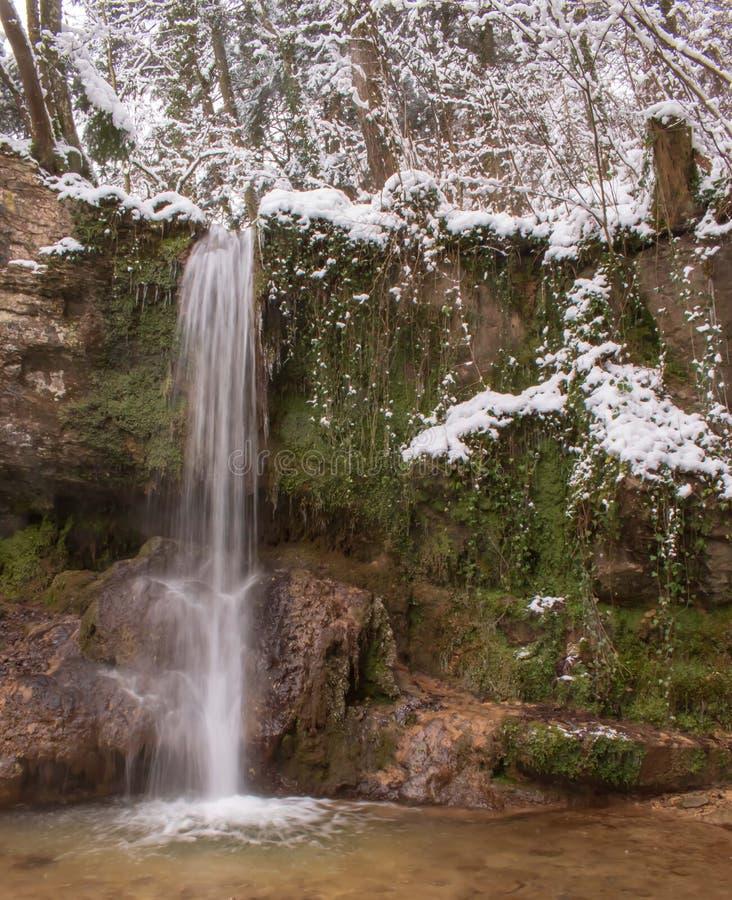 La cascata di Linn nella foresta innevata nell'inverno Preso vicino a Linn, la Svizzera, nel cantone di Argovia immagine stock