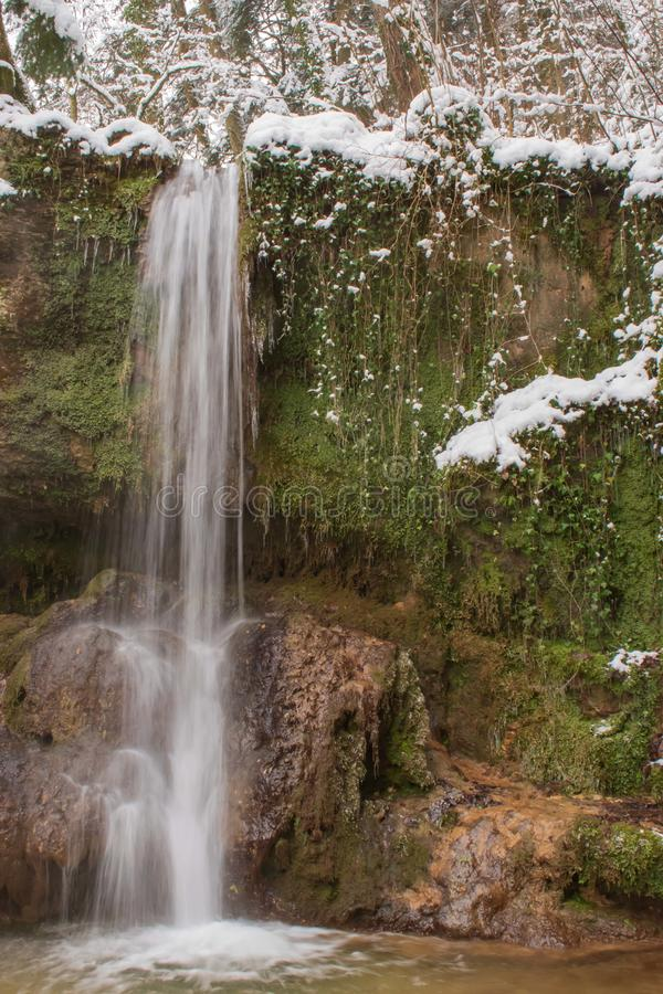 La cascata di Linn nella foresta innevata nell'inverno Preso vicino a Linn, la Svizzera, nel cantone di Argovia fotografia stock