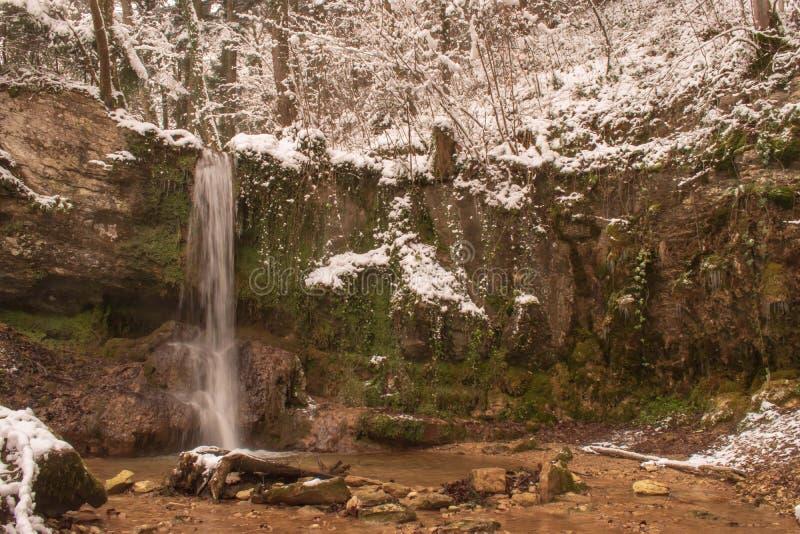 La cascata di Linn nella foresta innevata nell'inverno Preso vicino a Linn, la Svizzera, nel cantone di Argovia fotografia stock libera da diritti