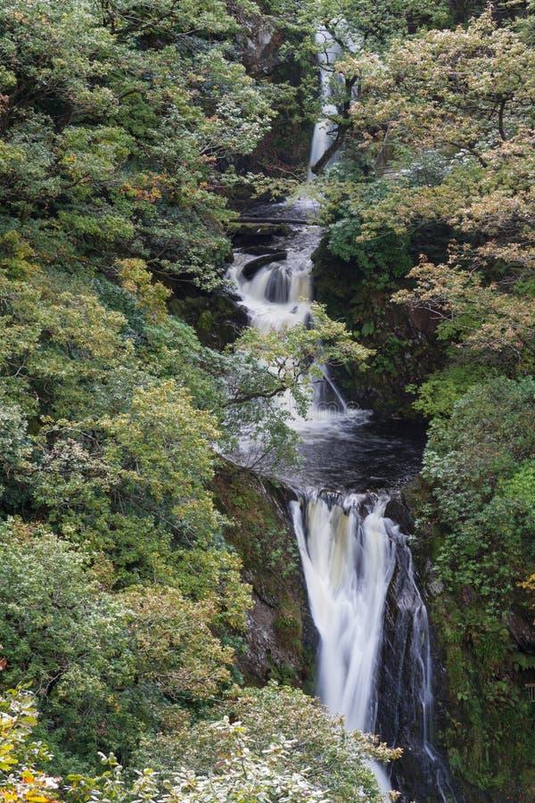 La cascata, Mynach cade, precipita a cascata, alberi in autunno o in caduta immagini stock libere da diritti
