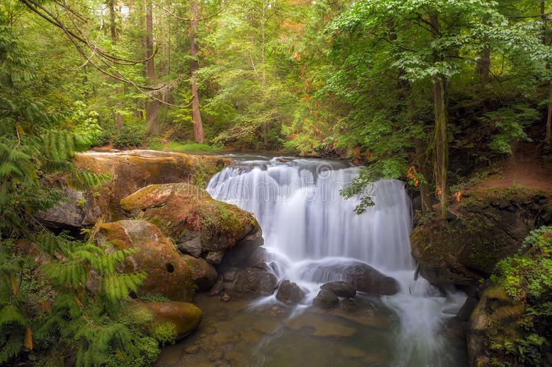 La cascata a Whatcom cade parco in Bellingham Washington U.S.A. fotografie stock