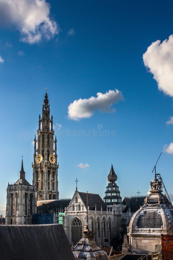 La catedral de Amberes en Bélgica imagen de archivo libre de regalías