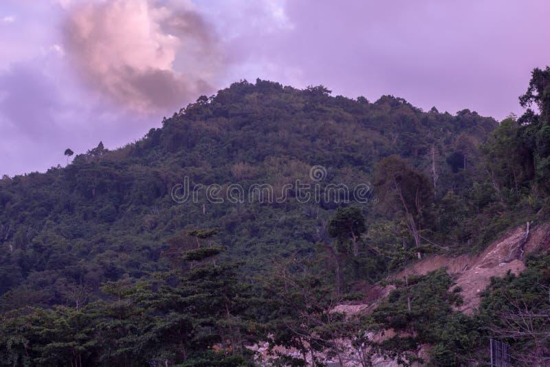 La catena montuosa verde dell'albero il cielo ? nuvolosa fotografia stock libera da diritti