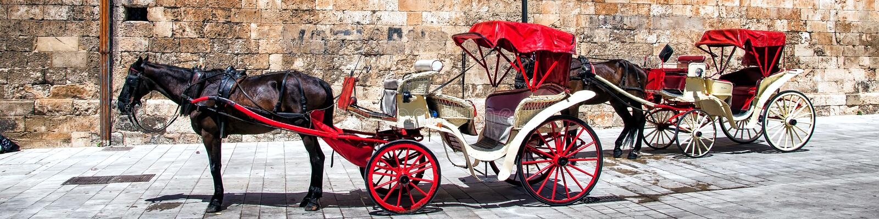 La cathédrale de Santa Maria de Palma de Majorca, Espagne photos libres de droits