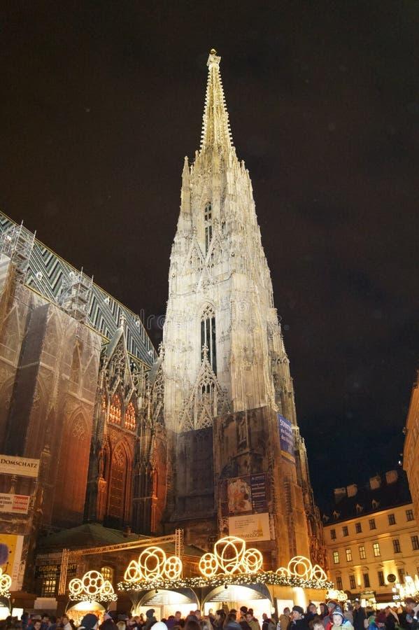 La cathédrale de St Stephen la nuit image libre de droits