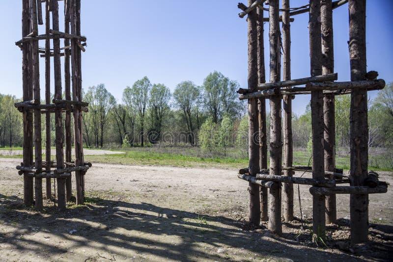 La cathédrale végétale dans Lodi, Italie, composée 108 colonnes en bois parmi lesquelles un chêne a été planté image stock