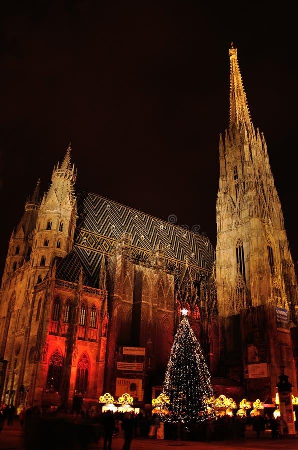 La cattedrale di St Stephen in Wien, Austria fotografie stock libere da diritti
