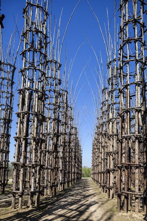 La cattedrale di verdure in Lodi, Italia, composta 108 colonne di legno fra cui una quercia è stata piantata fotografia stock libera da diritti