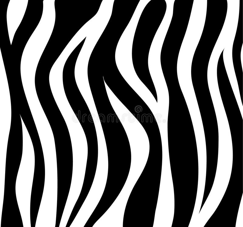 La cebra raya el fondo abstracto blanco y negro como piel Vecto libre illustration