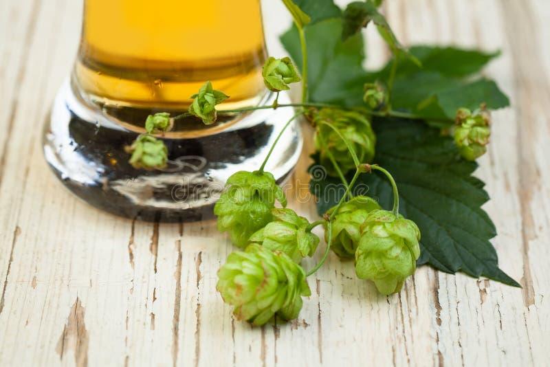 La cerveza y salta las hojas en viejo fondo de madera blanco de la textura fotos de archivo libres de regalías