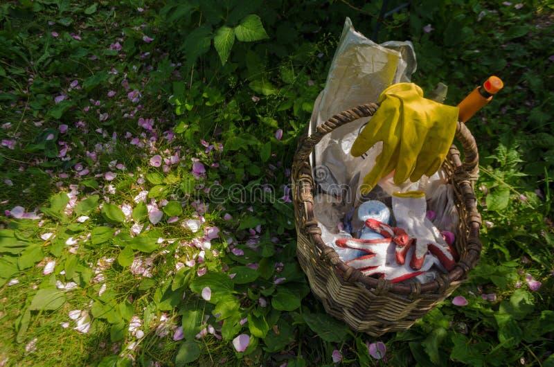 La cesta con las herramientas que cultivan un huerto y los guantes está en la hierba, que dispersó los pétalos rosados Opinión su imagenes de archivo