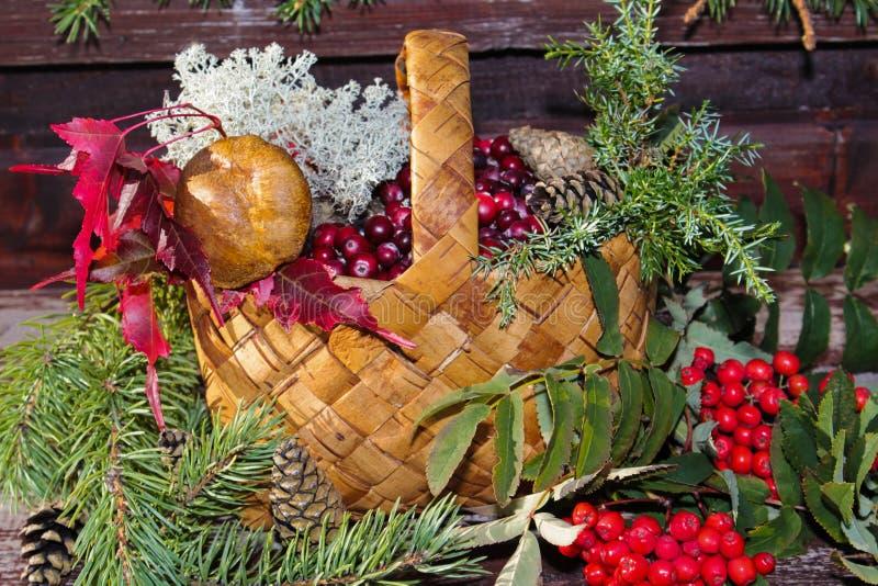 La cesta con otoño da fruto, las bayas, setas, serbal foto de archivo libre de regalías