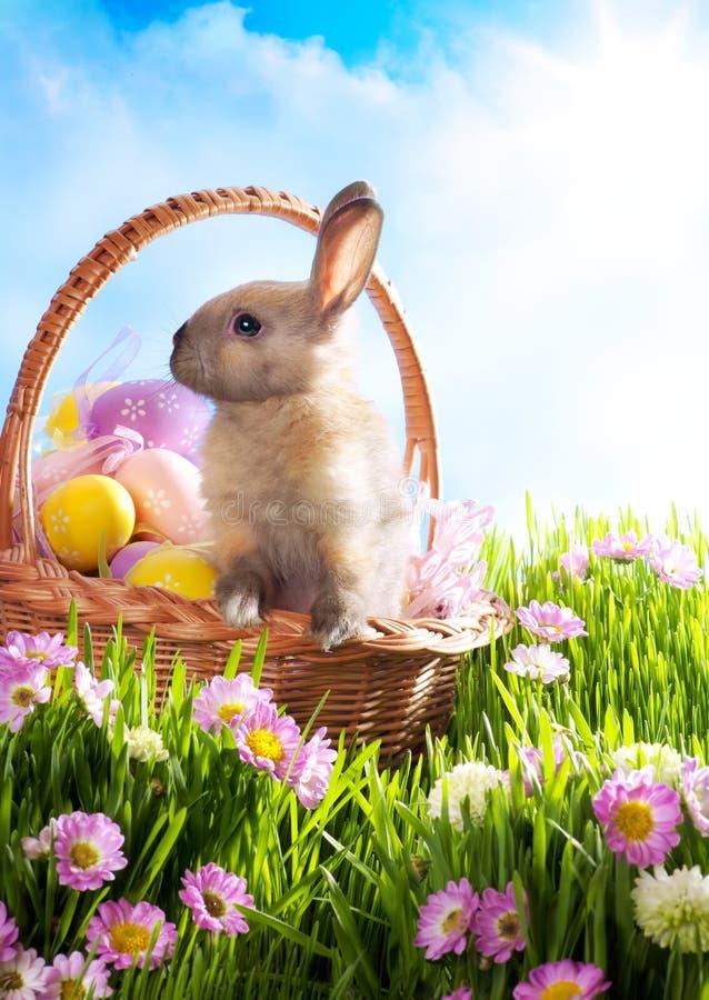 La cesta de Pascua adornó los huevos y el conejito de pascua foto de archivo