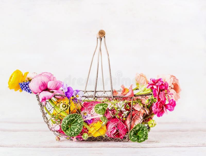 La cesta del vintage con el diverso jardín colorido florece en el fondo de madera blanco, vista delantera El cultivar un huerto d foto de archivo