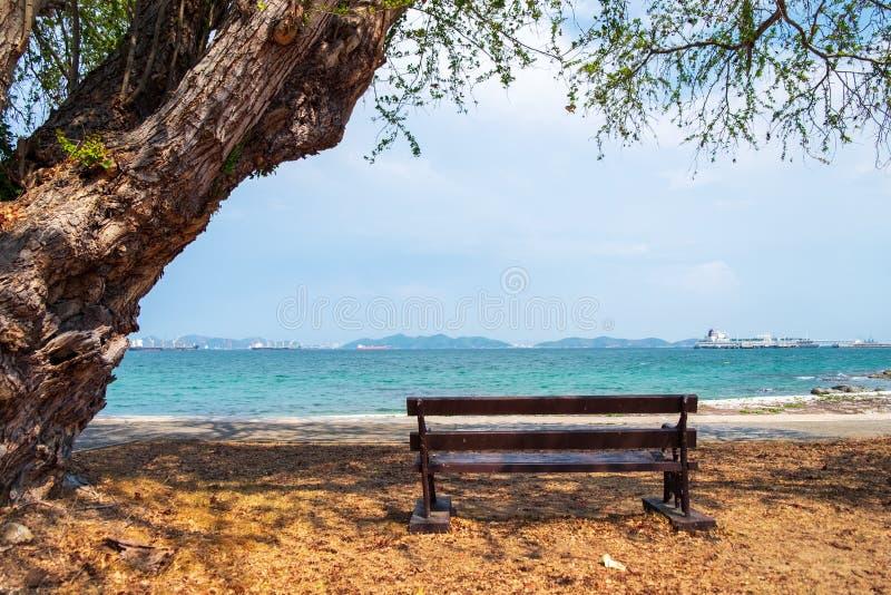 la chaise s'est assise à la nuance de l'arbre pour reposer et voir la mer en avant image libre de droits