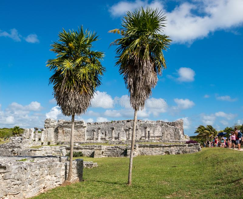 La Chambre des colonnes avec deux palmiers grands aux ruines maya antiques de Tulum au Mexique image stock