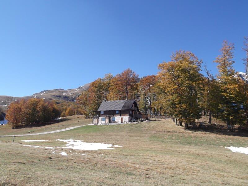 La Chambre et les arbres colorés photos stock