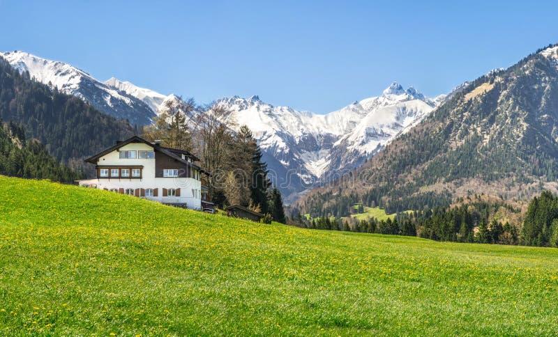 La Chambre sur le pré et la neige de fleur a couvert des montagnes à l'arrière-plan photographie stock libre de droits