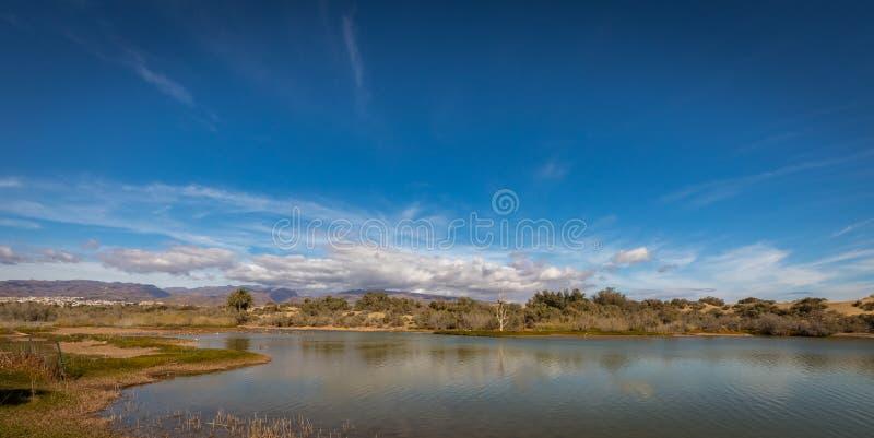 La Charca, lugar da observação do pássaro e reserva natural em Maspalomas em Gran Canaria, Espanha foto de stock