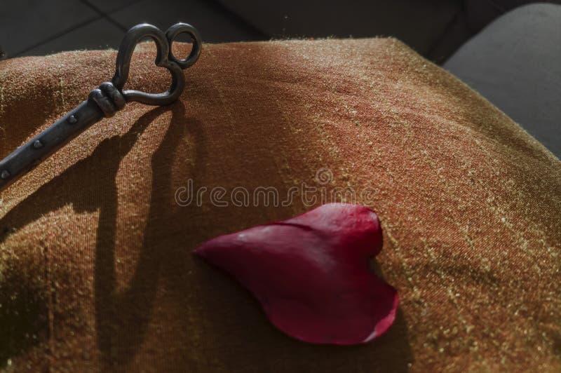 La chiave di amore con ombra ed il cuore a forma di sono aumentato petalo su tessuto immagine stock libera da diritti