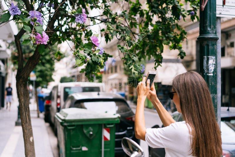 La chica joven está fotografiando a un sirio del hibisco en el teléfono fotos de archivo libres de regalías