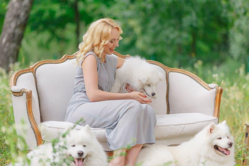 La chica joven hermosa con un perrito blanco en sus brazos y perros mullidos blancos más viejos en un sofá retro en un verano cul imagen de archivo