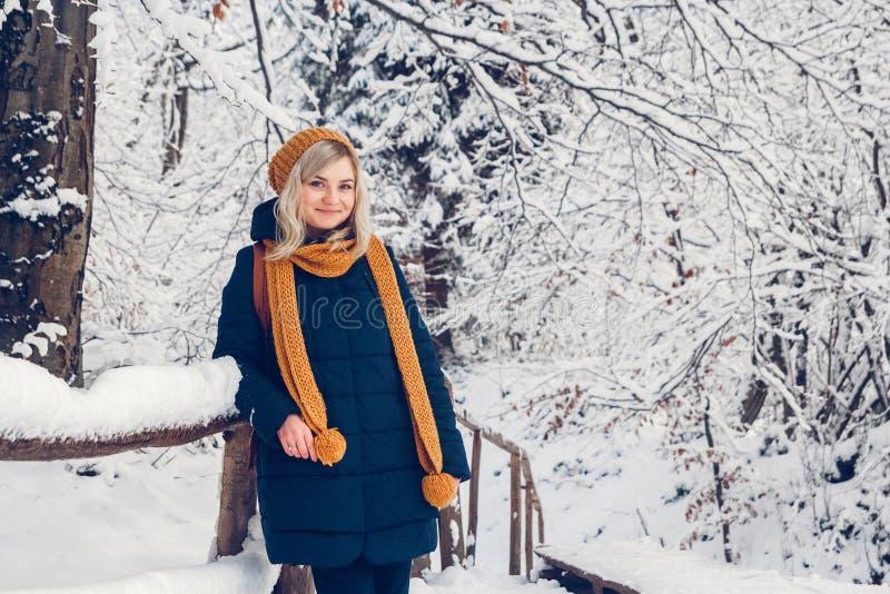 La chica joven hermosa en un parque del invierno camina en el bosque del invierno foto de archivo