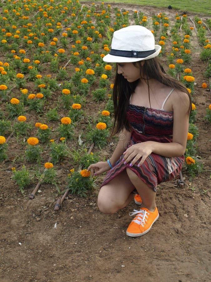 La chica joven que coge florece imágenes de archivo libres de regalías