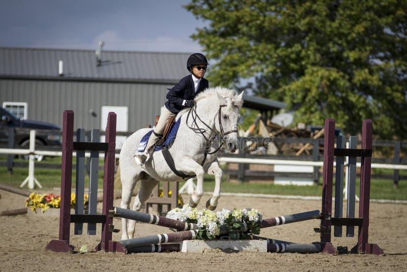 La chica joven que salta a Grey Pony imágenes de archivo libres de regalías
