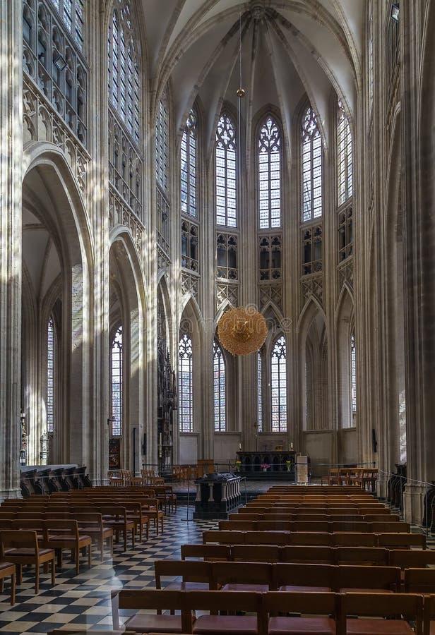 La chiesa di St Peter, Lovanio fotografia stock