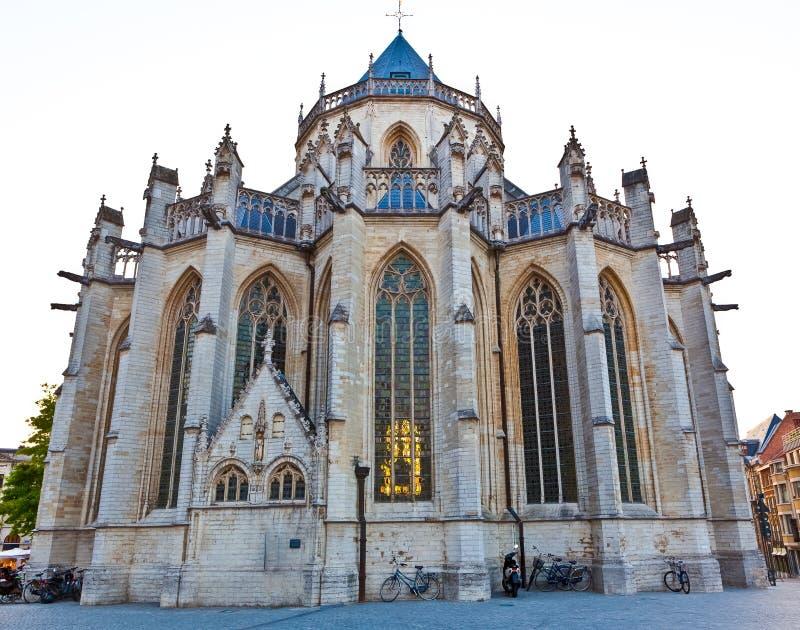 La chiesa Lovanio di St Peter gotico fotografia stock