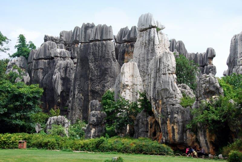 La Chine : Stationnement national de forêt en pierre image libre de droits