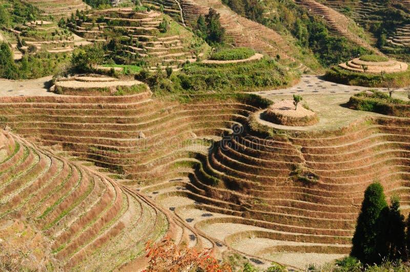 La Chine - terrasses de riz photo stock