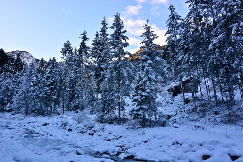 La choza en el bosque nevoso cerca de la corriente foto de archivo libre de regalías